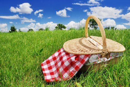 Fresh ideas for picnics