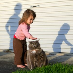 How much protein do babies really need?