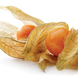 In season early spring: Cape gooseberries, coriander, gai lan