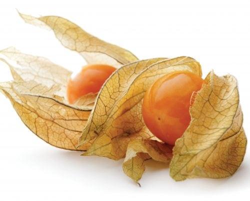 In season September: Cape gooseberries, coriander, gai lan