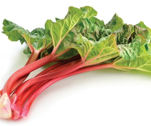 In season mid-spring: Rhubarb, grapefruit, telegraph cucumber