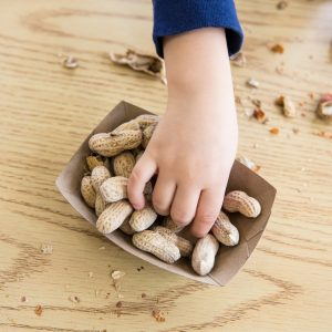 Evidence builds for peanut allergy cure
