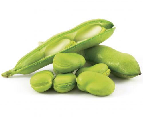 In season early summer: Broad beans, daikon, chives