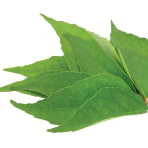 In season mid-summer: Curry leaf, watermelon, taro