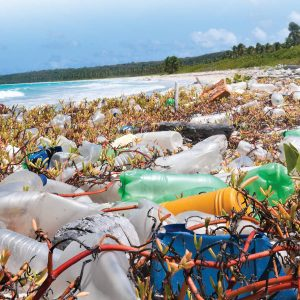 Time to cut our plastic waste