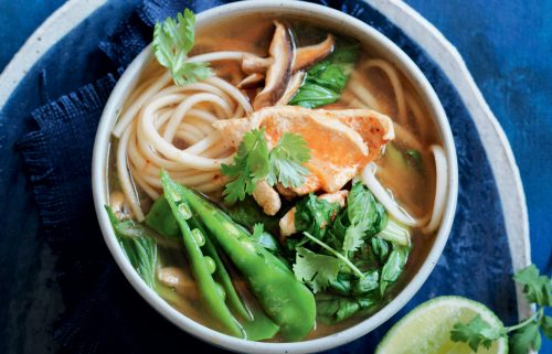 Spicy chicken and bok choy udon noodle soup