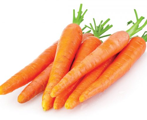 The lost plot: Growing carrots