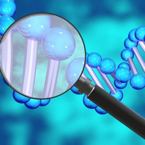 DNA testing: Friend or foe?