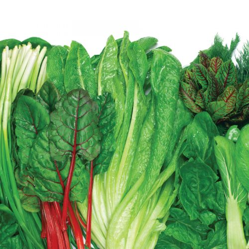 Healthy ageing: Going green while taking Warfarin