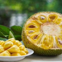 Halved jackfruit