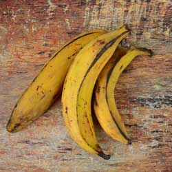 Three ripe plantains