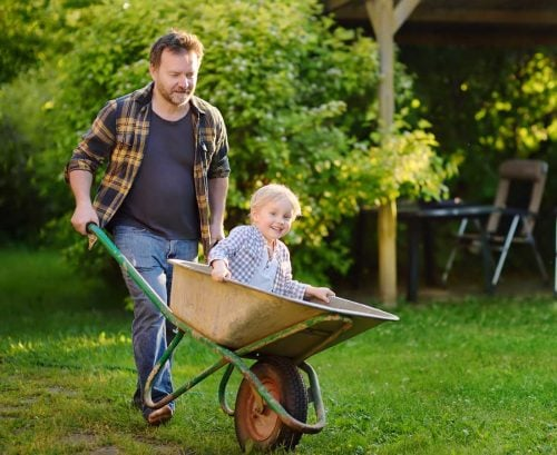 father taking child for ride in wheelbarrow