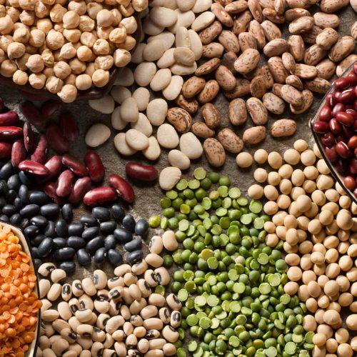 lentils, kidney beans, chickpeas, borlotti beans, black eye beans, adzuki, puy lentils