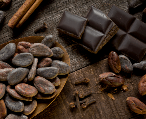 Dark chocolate and cacao beans