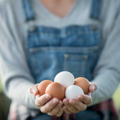 What to do with eggs – 10 easy ideas