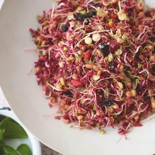 Vegan quinoa and beetroot salad