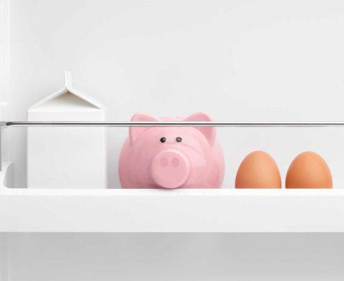 Piggy bank in the fridge door with some eggs and milk