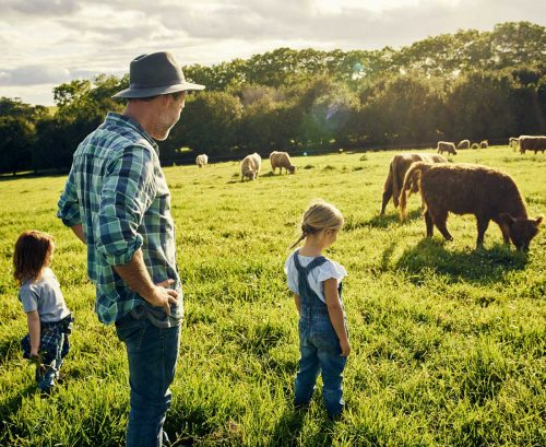 Male farmer and two kids looking at cows in a paddock
