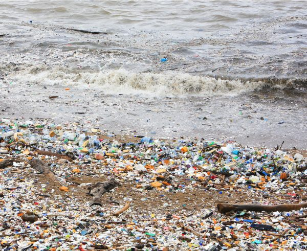 Takeaway containers among top ocean litter items