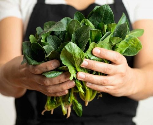 Woman holding big bunch of spinach