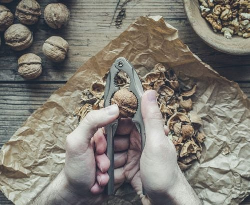 Cracking open a walnut with a nut cracker