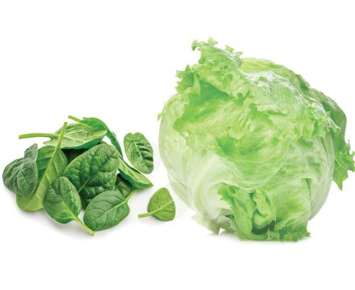 Baby spinach and a lettuce